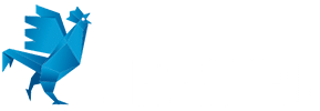 frenchfabh100blanc